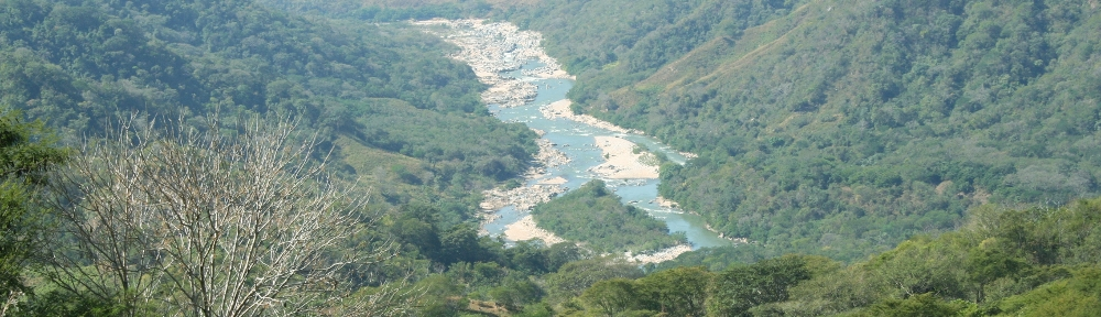 Rio tata 2