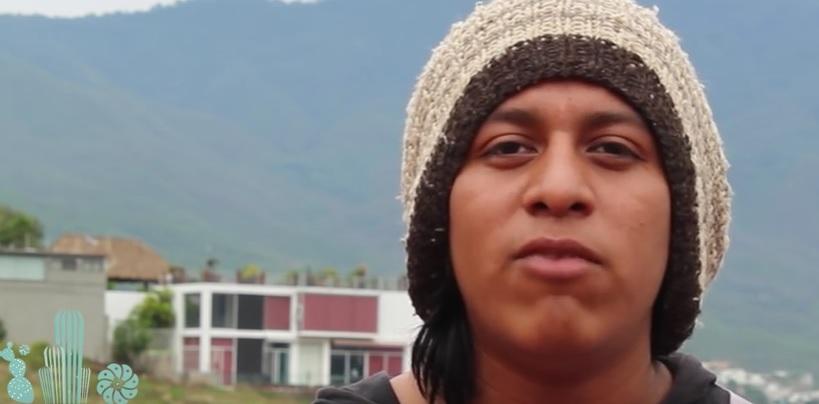Oaxaca en Defensa de la Madre Tierra