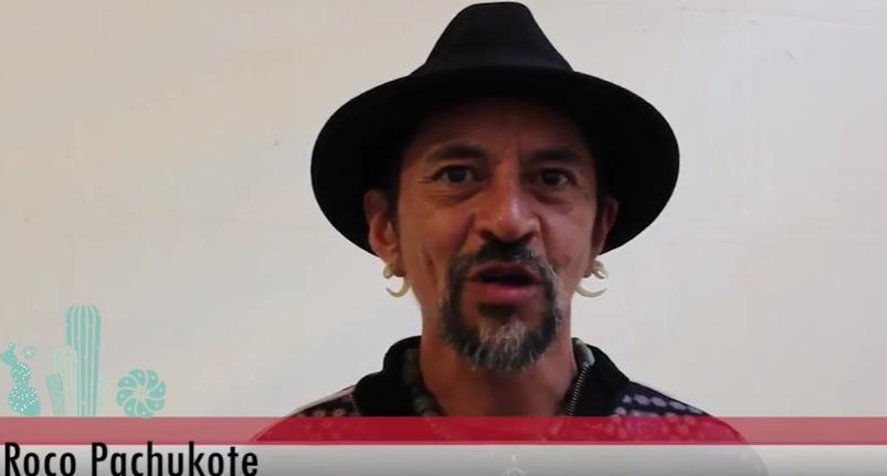 Roco Pachukote desde Oaxaca en Defensa de la Madre Tierra
